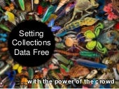 Setting Collections Data Free with the Power of the Crowd - SYNTHESYS3