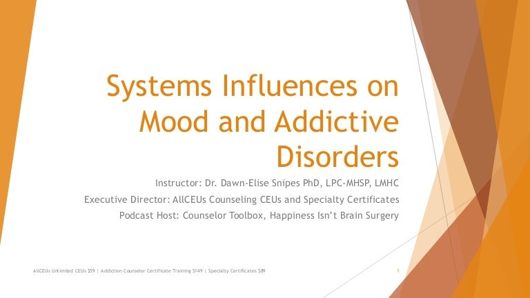 Addiction Counselor Certification Training Series Systems Influences