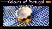 Portugal in Colours