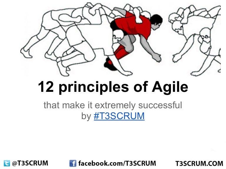 T3SCRUM: 12 principles of agile