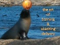 The Art of Training & Coaching Delivery