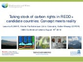Taking stock of carbon rights in REDD+ candidate countries: Concept meets reality