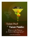 Talent puddle article v5