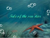 Tale Of The Sea Star - English