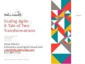Scaling Agile: A Tale of Two Transformations by Steve Martin