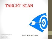 Target scan for fetal anomalies