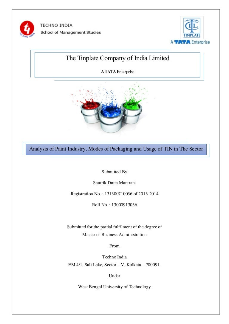 Analysis of Paint Industry, Modes of Packaging and Usage of TIN in Pa\u2026