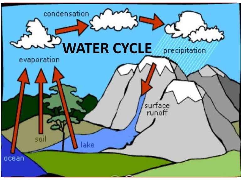 water cycle teach rh slideshare net Water Cycle Animation Transpiration Water Cycle
