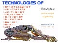 Technologies of Attractions - Museums, Galaries, Zoos, Castles, Dockyards, Fun Fairs