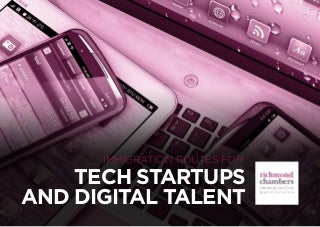 Immigration routes fߋr Tech Startups and Digital Talent