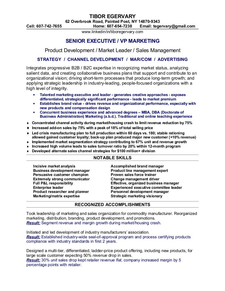 Senior Vice President  Global Business Development   Marketing Resume  samples Blue Sky Resumes