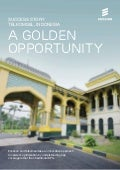 Telkomsel, Indonesia - A golden opportunity