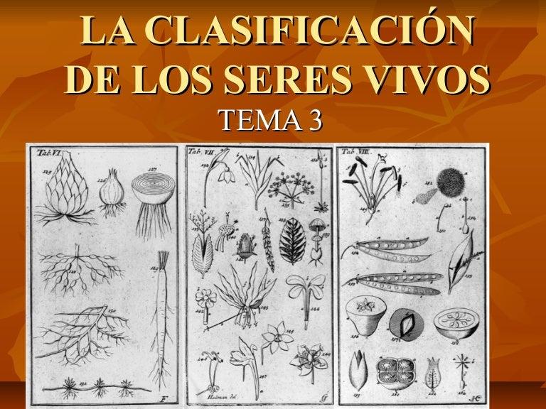Tema 3 la clasificación de los seres vivos