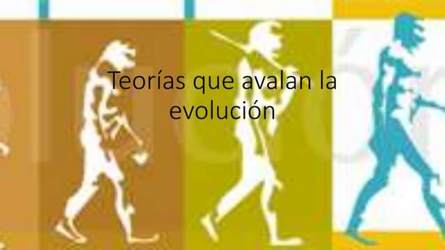 Teorías que-avalan-la-evolución