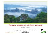 Forests, biodiversity and food security