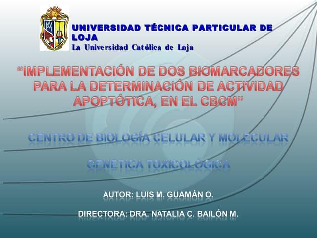 IMPLEMENTACIÓN DE DOS BIOMARCADORES PARA LA DETERMINACIÓN DE ACTIVIDAD APOPTÓTICA, EN EL CBCM