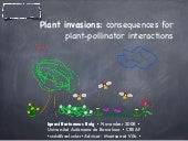 Plant-pollination networks and plant invasions