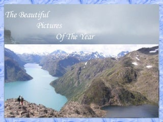 The Beste Beautiful Pictures