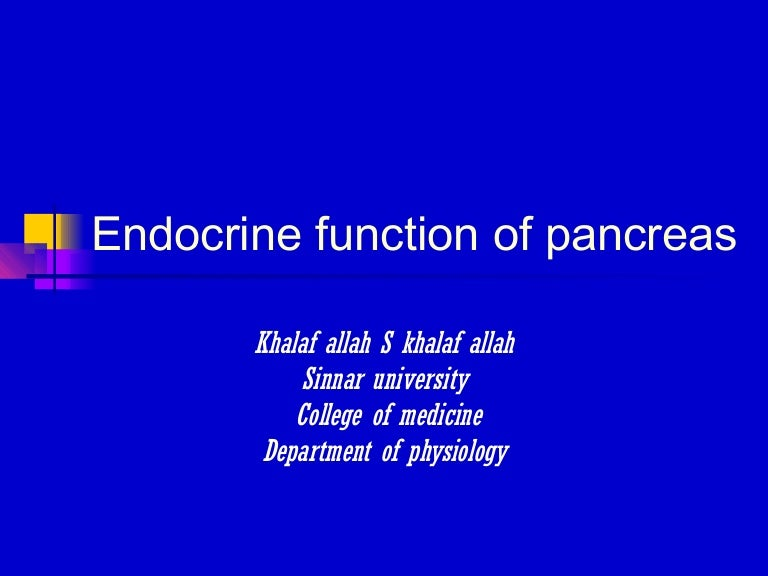 The Endocrine Functions Of The Pancreas