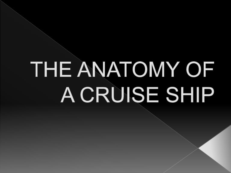 The Anatomy Of A Cruise Ship Report