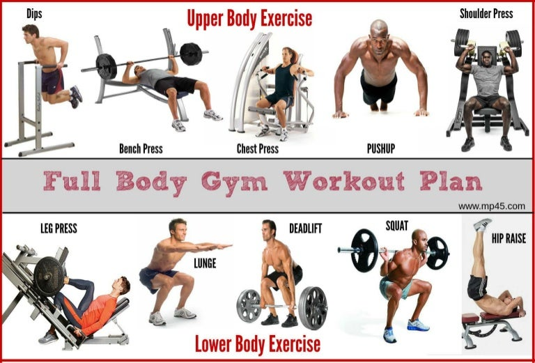 the best full body gym workout guide by mp45. Black Bedroom Furniture Sets. Home Design Ideas