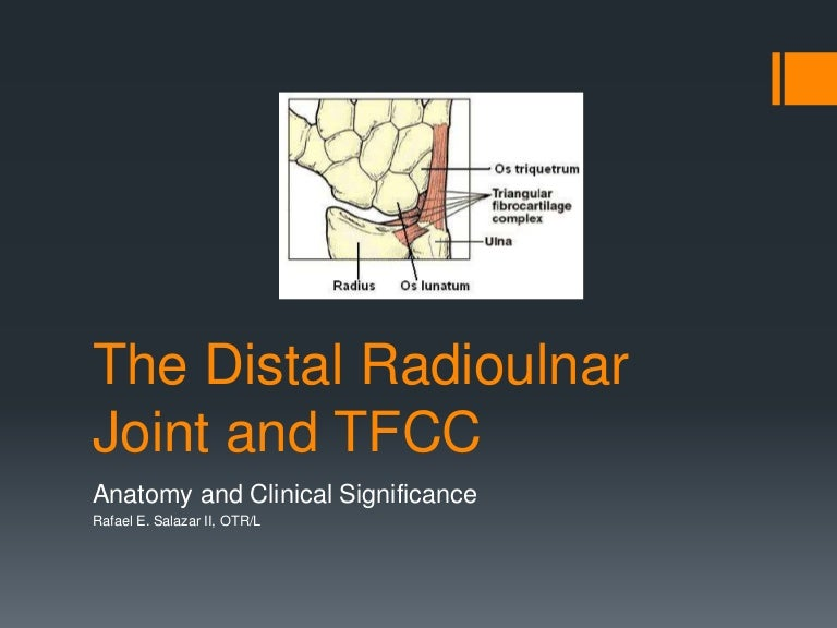 The distal radioulnar joint and tfcc