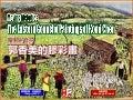 The eastern gouache paintings of Komi Chen (郭香美的膠彩畫)