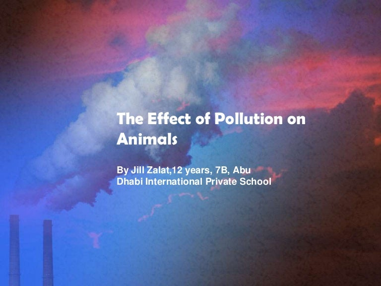 The effect of pollution on animals Air Pollution Effects On Animals Pics