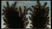 The laurel in the painting (1)