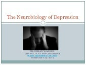 The Neurobiology of Depression (Dr Imran Waheed)