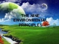 The nine environmental principles