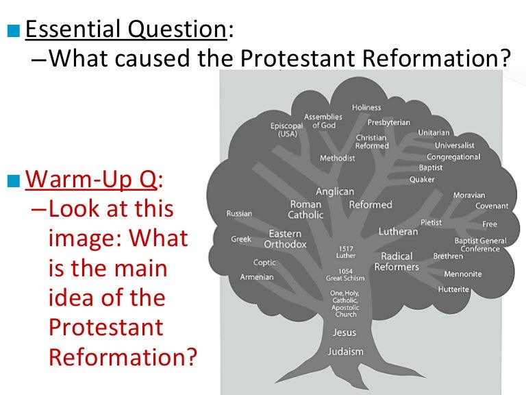 the cause and effects of the reformation essay Major causes and effects of the protestant reformation there were several causes of the protestant reformation that effected society, politics, and religion in europe during the 16th we will write a custom essay sample on cause and effects of protestant reformation specifically for you.