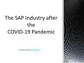 The SAP Industry after the COVID-19 Pandemic