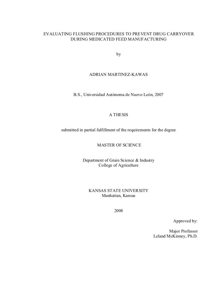 Evaluating a master thesis