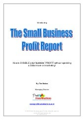The Small Business Profit Report