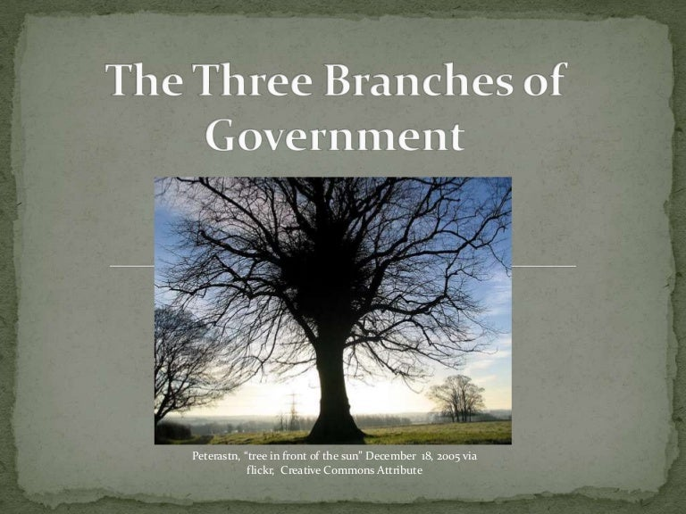 3 Branches of Government Activities- Ideas for Teaching.