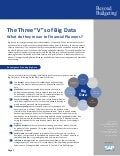 "The Three ""V""s of Big Data"