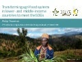 Transforming agri-food systems in lower- and middle-income countries to meet the SDGs
