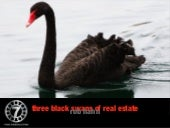 Three black swans 2.0
