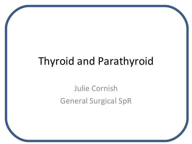 Thyroid And Parathyroid Glands Julie Cornish
