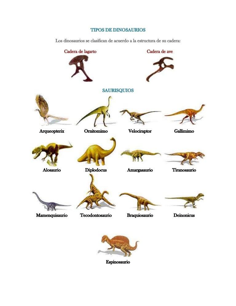 Tipos De Dinosaurios Había muchos tipos diferentes de dinosaurios, y vivían en muchos hábitats diferentes. tipos de dinosaurios