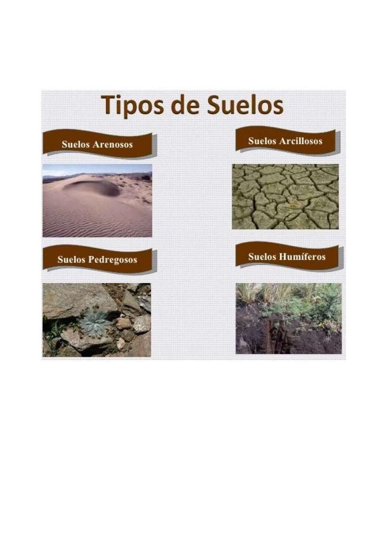 Tipos de suelos - Laminas adhesivas para suelos ...