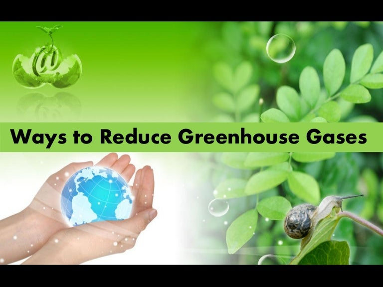 Greenhouse Effect Art