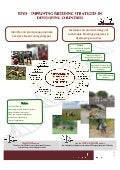 Improving breeding strategies in developing countries
