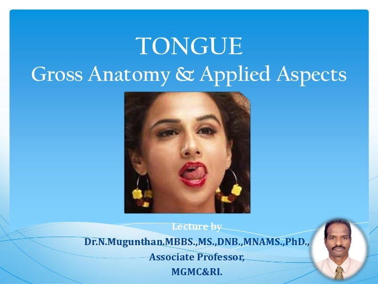 Tongue Gross Anatomy Applied Aspects Drngunthanms