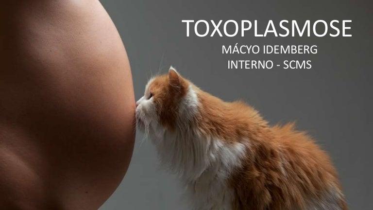 toxoplasmose portugues