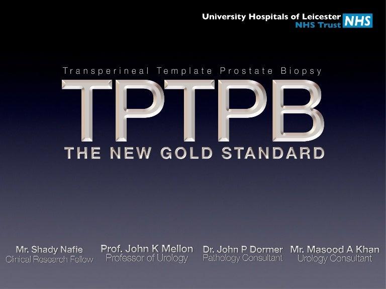 transperineal template prostate biopses