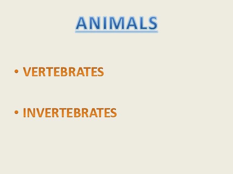 photo regarding Free Printable Worksheets on Vertebrates and Invertebrates named VERTEBRATES AND INVERTEBRATES