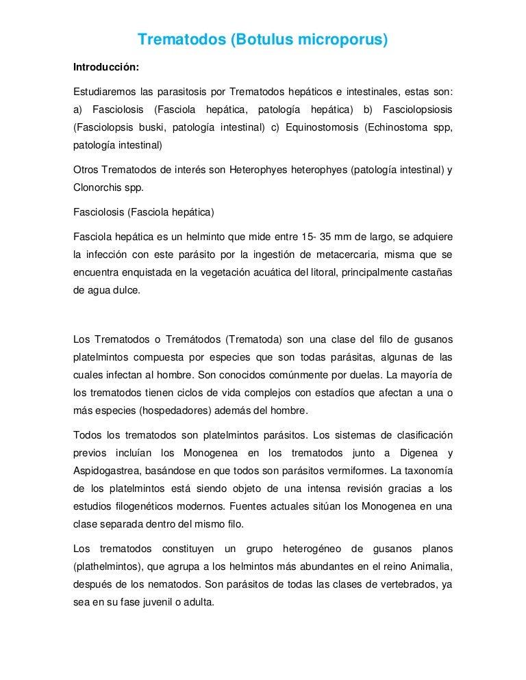 ejemplos de parasitos trematodos