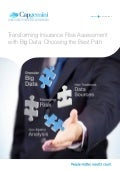 Transforming Insurance Risk Assessment with Big Data: Choosing the Best Path